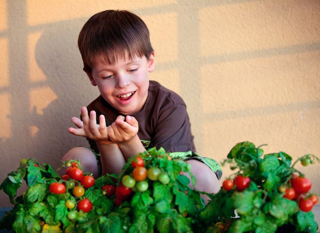 Autism treatment and gardening